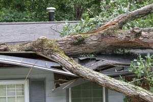 Commercial Restoration - Tree destroys house due to wind damage.
